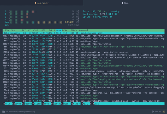 Htop running in hyperterm